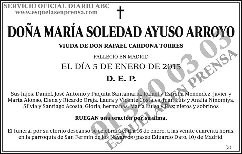 María Soledad Ayuso Arroyo